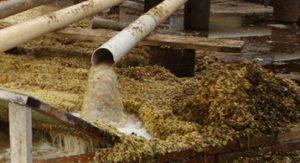 Acopio de residuos de pistachos